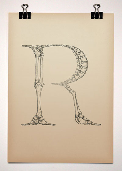 Anatomical_Typography.jpg